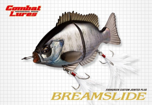 EVERGREEN - BREAM SLIDE