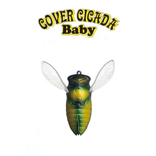 Fish Arrow - COVER CICADA Baby